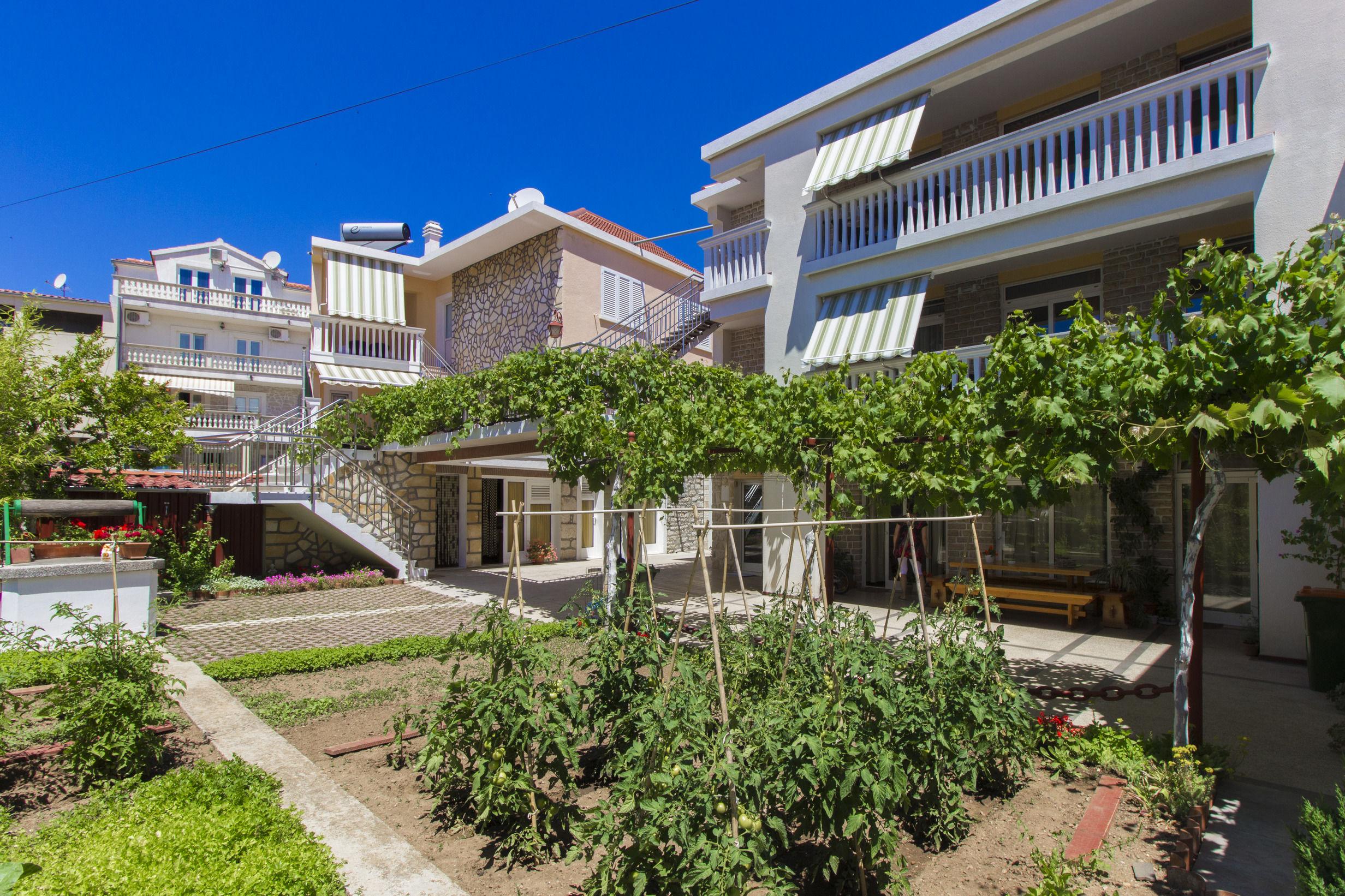 Apartments Borac