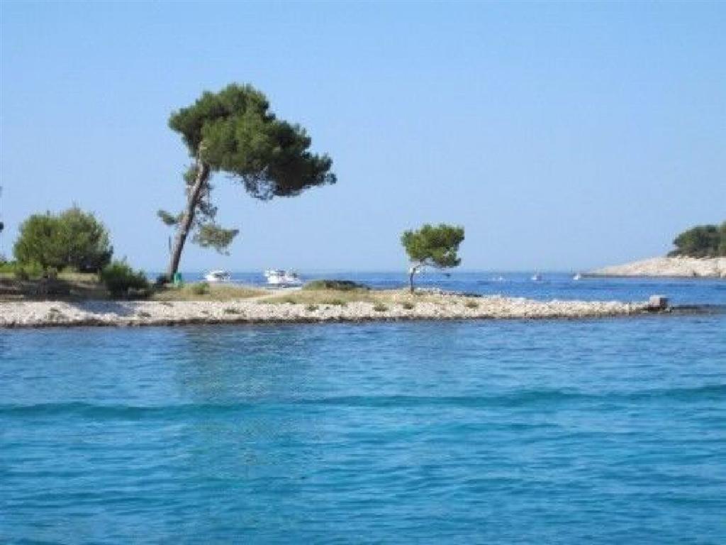 Appartement de vacances Ferienwohnungen Arsen 61991-A5 (2820195), Mali Lošinj, Île de Losinj, Kvarner, Croatie, image 54
